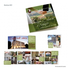 portfolio-Baccaresca2