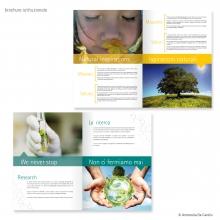 portfolio-Bioenergie3